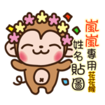 Twopebaby flower monkey 937